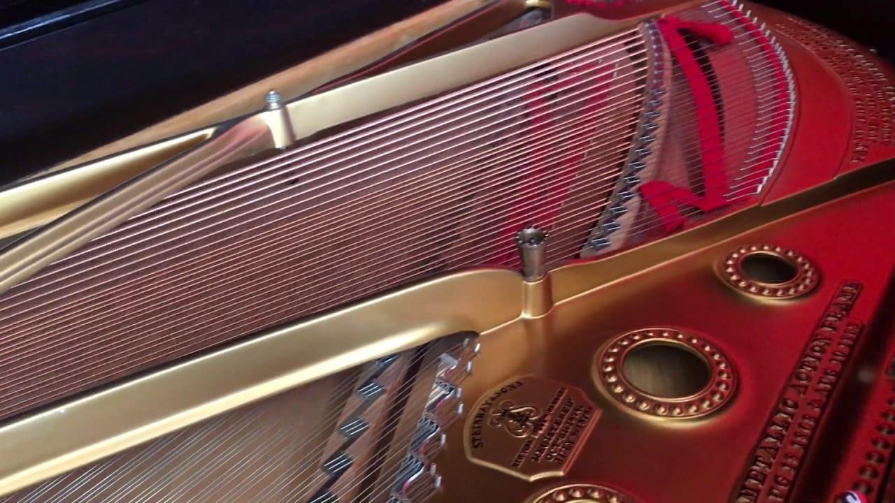 Cordes de piano coté accroche